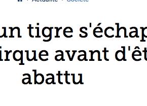 Un tigre sème la panique à Paris: Ce qu'onsait